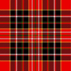14953198-tartan-pattern