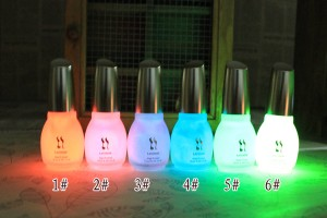 10pcs-12-Colors-15ml-Fluorescent-Neon-Luminous-Nail-Polish-Glow-in-Dark-Nail-Varnish-Nail-Enamel